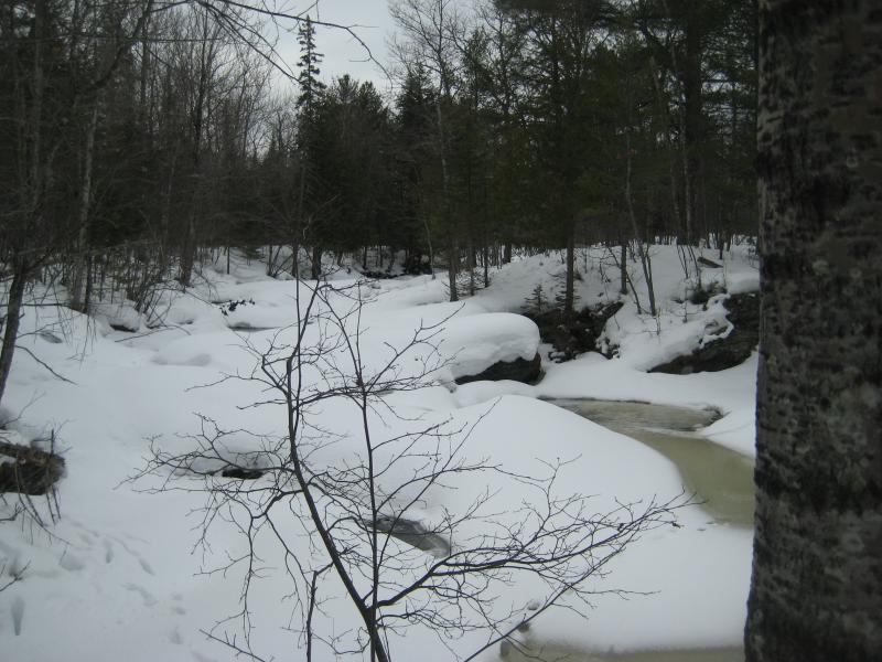Snow covering the river