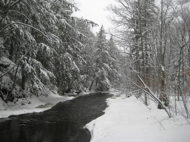 Snow crowded around the East Branch