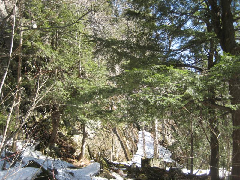 Steep outcropping near the mouth of the creek