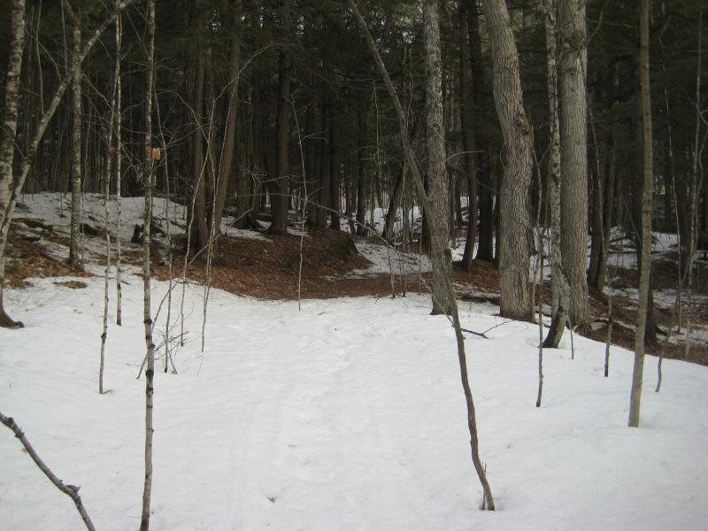 Little path over snow