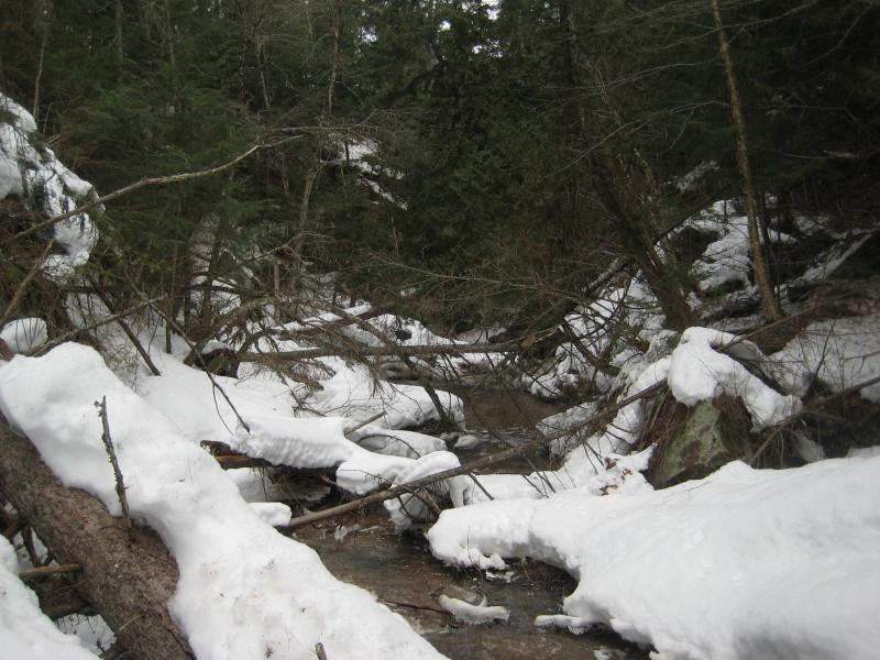 Deep piles of snow in the gorge