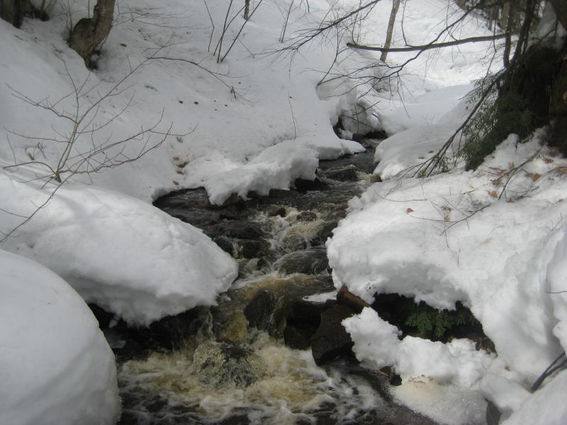 Flowing water between snowy banks