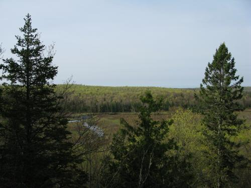 Overlooking upper Sturgeon River