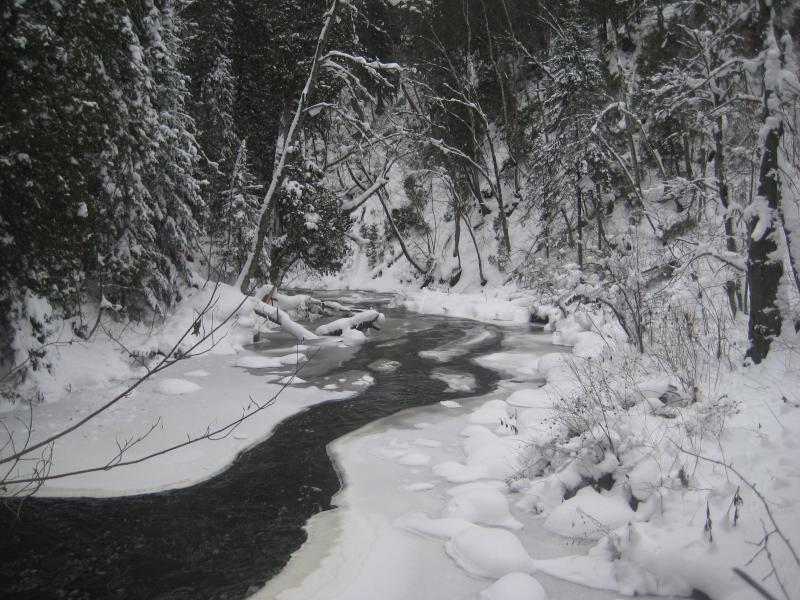 Icy scene on the Carp River