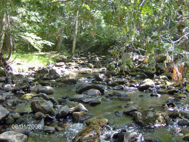 A rocky walk upstream